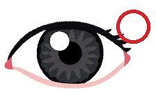 裏側 の コンタクト 目